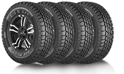 BF AS Tires